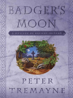 Badger's Moon: A Mystery of Ancient Ireland