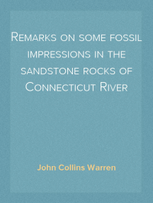 Remarks on some fossil impressions in the sandstone rocks of Connecticut River
