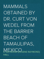 Mammals Obtained by Dr. Curt von Wedel from the Barrier Beach of Tamaulipas, Mexico