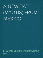 A New Bat (Myotis) From Mexico