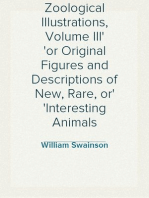 Zoological Illustrations, Volume III or Original Figures and Descriptions of New, Rare, or Interesting Animals