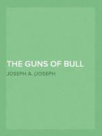 The Guns of Bull Run