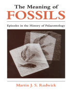 The Meaning of Fossils