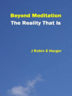Beyond Meditation The Reality That Is