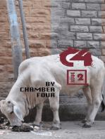 C4 Issue 2