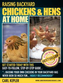 Raising Backyard Chickens & Hens at Home