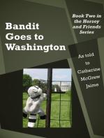 Bandit Goes to Washington
