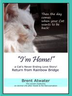 I'm Home! a Cat's Never Ending Love Story, Cat reincarnation stories- Animal Life after Death, Pet Heaven, Pet loss & Reincarnation