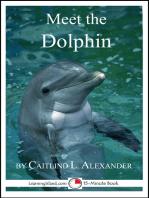 Meet the Dolphin