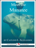 Meet the Manatee