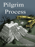 Pilgrim Process