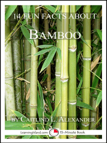 14 Fun Facts About Bamboo: A 15-Minute Book