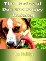 The Basics of Dog and Puppy Training