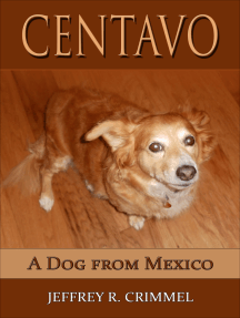 Centavo; A Dog From Mexico
