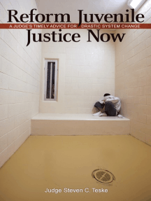 Reform Juvenile Justice Now: A Judge's Timely Advice for Drastic System Change