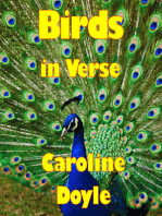 Birds In Verse