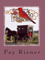 As Her Name Is So Is Redbird-book 4-Nurse Hal Among The Amish