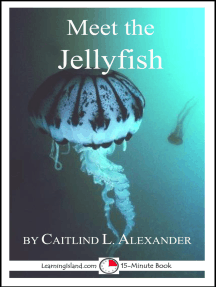 Meet the Jellyfish: A 15-Minute Book for Early Readers