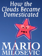How the Clouds Became Domesticated