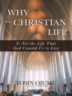 Why the Christian life is not the life that God created us to live