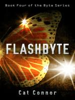 Flashbyte