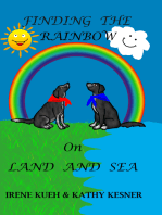 Finding The Rainbow On Land And Sea