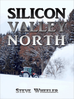 Silicon Valley North