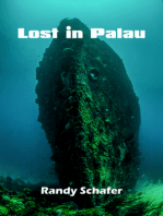 Lost in Palau