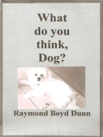 What do you think, Dog?