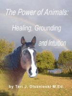 The Power of Animals