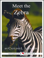 Meet the Zebra