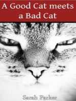 A Good Cat meets a Bad Cat
