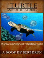 The Turtle and Other Stories by Bert Brun