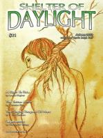 Shelter of Daylight Vol. 9