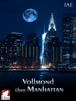 Vollmond über Manhattan