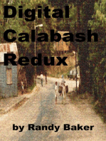 Digital Calabash Redux