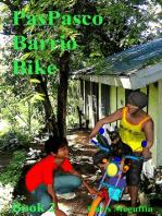 PasPasco Barrio Bike. Book Two
