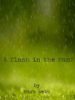 A Flash in the Pan?