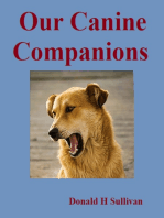 Our Canine Companions: