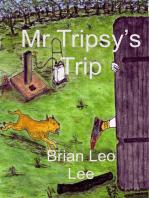 Mr Tripsy's Trip