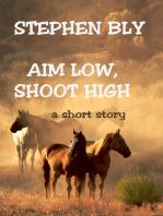 Aim Low, Shoot High