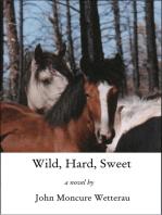 Wild, Hard, Sweet