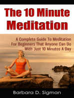 The 10 Minute Meditation