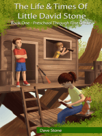 The Life & Times of Little David Stone