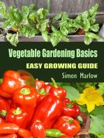 Vegetable Gardening Basics