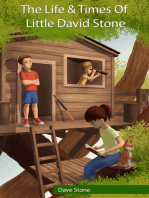 The Life and Times of Little David Stone