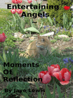 Entertaining Angels ~ Moments of Reflection