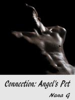 Connection: Angel's Pet