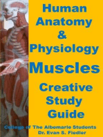 Human Anatomy & Physiology: Muscles