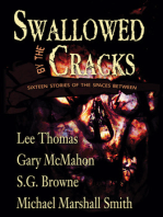 Swallowed By The Cracks